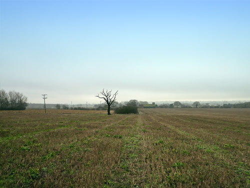 Land for Sale Maldon